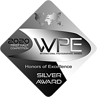 Badges accumulated by Alexander Kobeliuk on WPE Awards